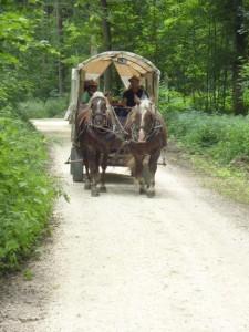 2011 Planwagen