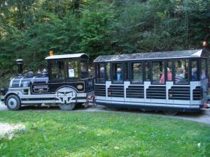 1. Bild Lockomotive, Ausflug Blb,